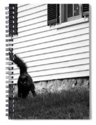 I'm Watching You Black And White Spiral Notebook
