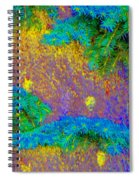 Imagining Hawaii Spiral Notebook