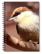 Img_0001 Brown-headed Nuthatch Spiral Notebook
