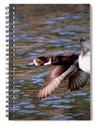Img_0001 - Ring Neck Spiral Notebook