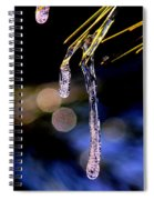 Img_0001 - Starting The Thaw Spiral Notebook
