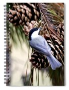 Img_0215-022 - Carolina Chickadee Spiral Notebook