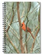 Img_1273-003 - Northern Cardinal Spiral Notebook