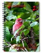 Img_1309-009 - Merry Christmas Spiral Notebook