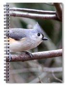 Img_4672 - Tufted Titmouse Spiral Notebook