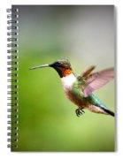 Img_5065 Spiral Notebook