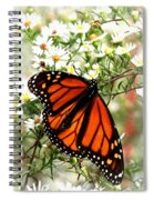 Img_5284-001 - Butterfly Spiral Notebook