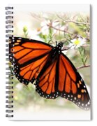 Img_5290-004 - Butterfly Spiral Notebook