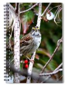 Img_6624-002 - White-throated Sparrow Spiral Notebook