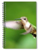 Img_7512 - Ruby-throated Hummingbird Spiral Notebook