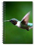 Img_7668-003 - Ruby-throated Hummingbird Spiral Notebook