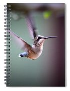 Img_8532 - Ruby-throated Hummingbird Spiral Notebook
