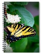 Img_8712-001 - Swallowtail Butterfly Spiral Notebook
