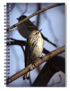 Img_9896 - Yellow-rumped Warbler Spiral Notebook