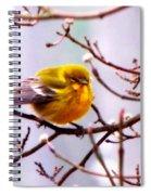 Img_9900 - Pine Warbler Spiral Notebook