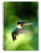Img_9985-001 - Ruby-throated Hummingbird Spiral Notebook