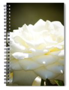 Immaculate Rose Spiral Notebook