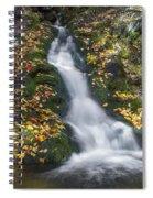 Imp Trail Cascade Spiral Notebook