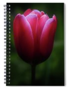 Imperfect Perfection Spiral Notebook