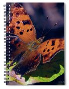 Imperfect Satyr Comma Spiral Notebook