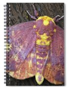 Imperial Moth Spiral Notebook