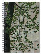 Impression Of Wall And Trees Spiral Notebook