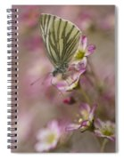 Impression With A Small Butterfly Spiral Notebook