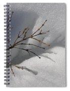 Impressions Spiral Notebook