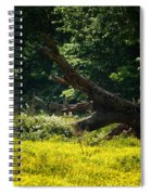 In A Field Of Gold Spiral Notebook