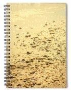 In A Golden Morning Spiral Notebook