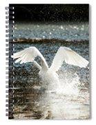 In A Splash Spiral Notebook