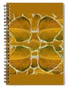 In Autumn Spiral Notebook