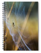 In Color Spiral Notebook