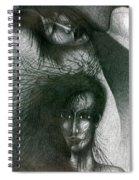 In Dream Spiral Notebook