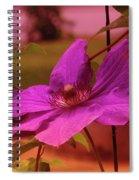 In Full Blue Blossom  Spiral Notebook