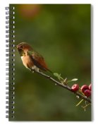 In Line With The Branch I Spiral Notebook