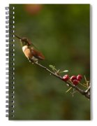 In Line With The Branch Spiral Notebook
