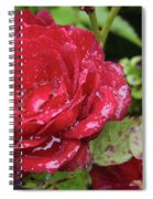 In Love With Rain Spiral Notebook