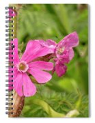 In Meadows II Spiral Notebook