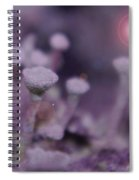 In Mushroom Land  Spiral Notebook