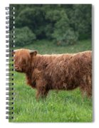 In Need Of A Haircut Spiral Notebook