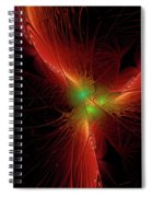 In Red 0020 Spiral Notebook
