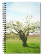 In Spring's Embrace Spiral Notebook