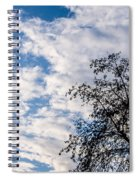 In That Quiet Earth - At Sunset Spiral Notebook