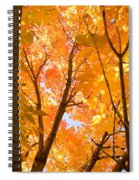 In The Autumn Mood  Spiral Notebook