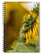 In The Background Spiral Notebook