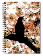 In The Cherry Tree Spiral Notebook