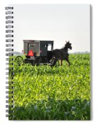 In The Corn Spiral Notebook