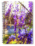 In The Evening Spiral Notebook