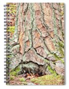 In The Forest Art Series - Tree Bark Patterns 1  Spiral Notebook